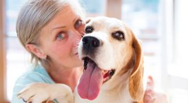 Are Pets Good for ADHD?
